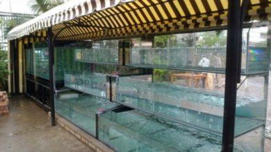 Photo of Bể Hải Sản cho nhà hàng