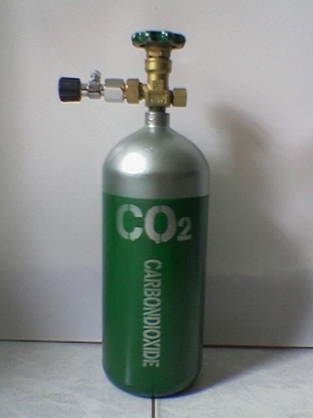 Bình CO2 giúp cây cối mướt mát hơn
