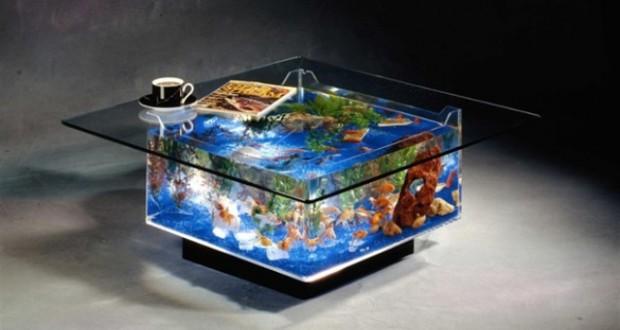 Bể cá bàn bằng kính rực rỡ