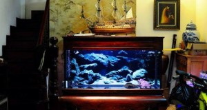 Hình ảnh bể cá chân quỳ gỗ gụ