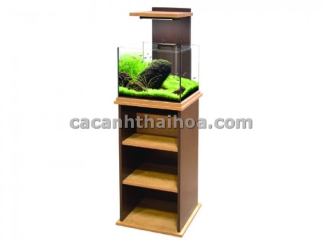 Bể cá mini cubic cho văn phòng