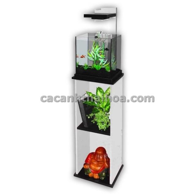 Hình ảnh bể cá mini cubic