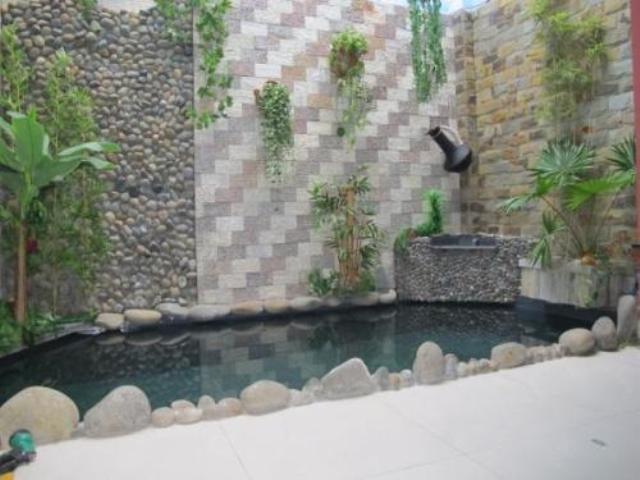 Hình ảnh hồ cá koi