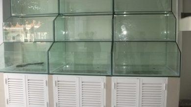 Photo of Dàn bể hải sản chân gỗ kính chồng 3 tầng