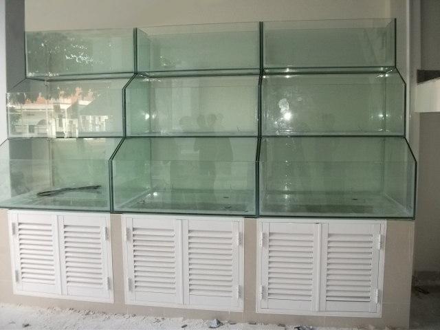 Hình ảnh bể hải sản
