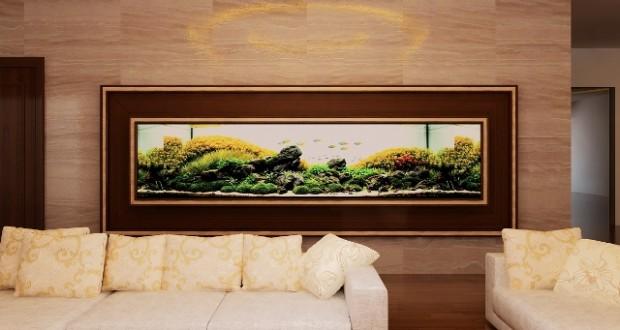 Hình ảnh bể thủy sinh âm tường