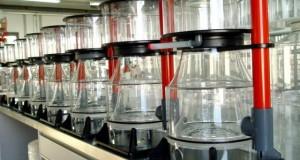 Hình ảnh Protein skimmer