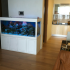 Hình ảnh bể cá biển gỗ sồi sơn trắng