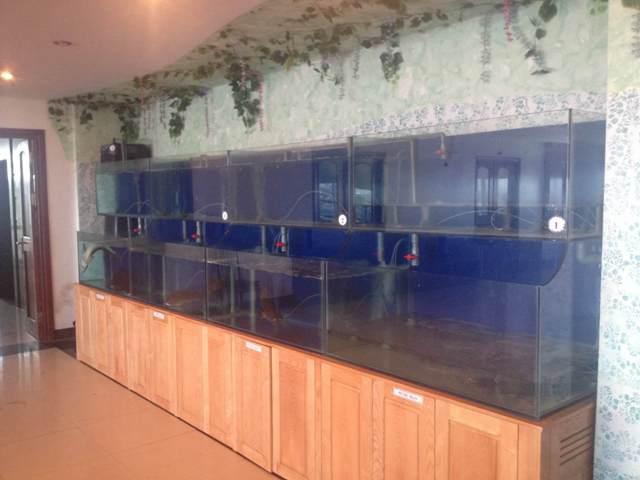 Hình ảnh dàn bể hải sản
