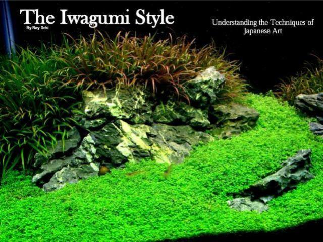 Hình ảnh nghệ thuật xếp đá Iwagumi