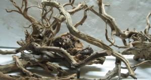 Hình ảnh gỗ lũa Linh Sam