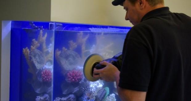 Hình ảnh xử lý kính bể cá bị trầy xước