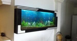 Hình ảnh bể cá treo tường