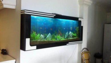 Photo of Mẫu bể cá treo tường hiện đại