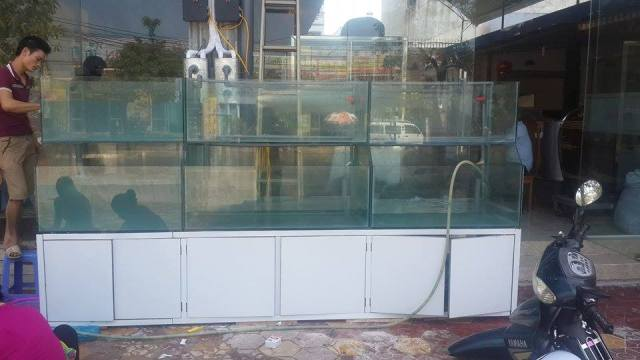 Hình ảnh dàn bể hải sản lắp tại TP Lạng Sơn