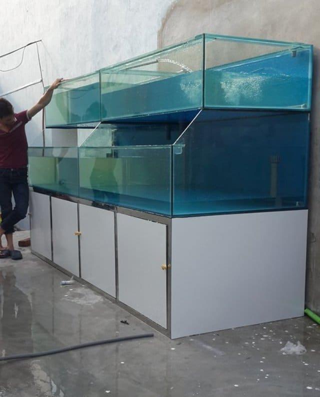 Hình ảnh dàn bể hải sản tại TP Lạng Sơn