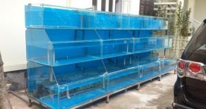 Hình ảnh dàn bể hải sản 3 tầng