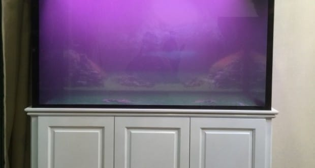 Hình ảnh bể cá rồng gỗ sồi khung lim sơn trắng