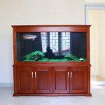 Mẫu bể cá rồng gỗ Xoan Đào