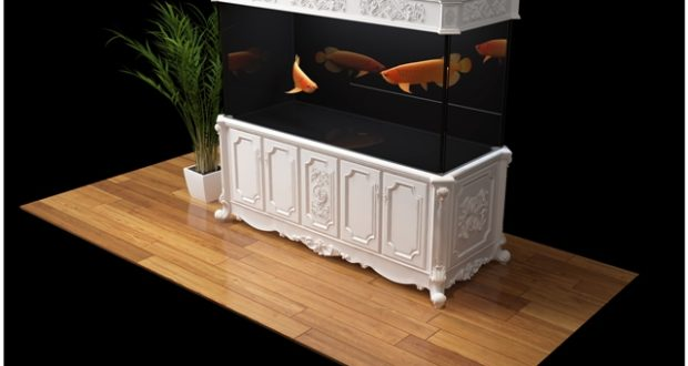 Hình ảnh mẫu bể cá rồng mới nhất