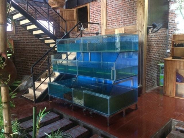 Hình ảnh Dàn bể hải sản thi công tại Ninh Bình