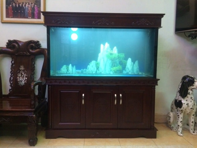 Hình ảnh bể cá rồng thi công tại Cầu Diễn