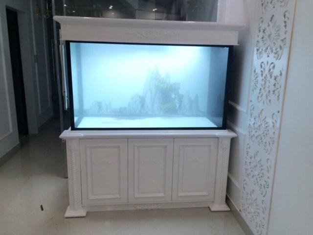 Hình ảnh bể cá rồng thi công tại Hải Phòng