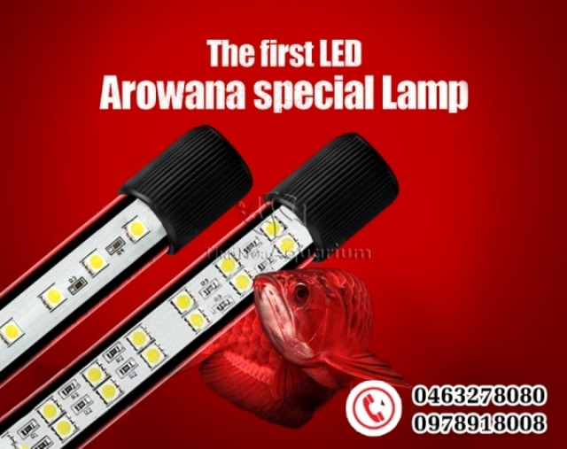 Hình ảnh đèn led Beamswork