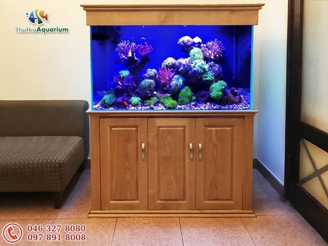 Hình ảnh bể cá cảnh biển 107cm