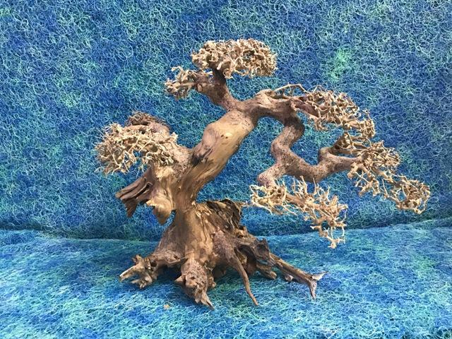 Hình ảnh Mẫu lũa bonsai số 02