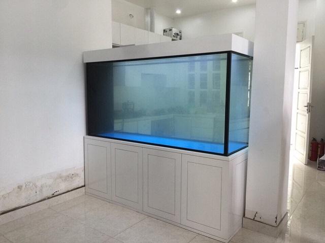 Hình ảnh Bể cá rồng hiện đại sơn trắng