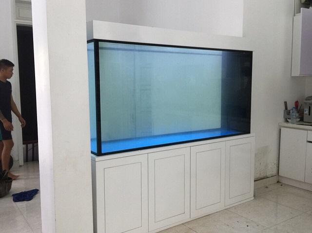 Hình ảnh Bể cá rồng sử dụng ngăn phòng