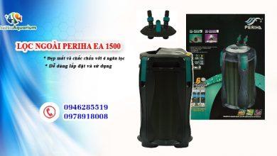 Photo of Lọc Ngoài Periha EA 800 – 1000 – 1200 – 1500