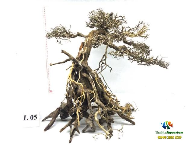 Hình ảnh Mẫu bonsai L05
