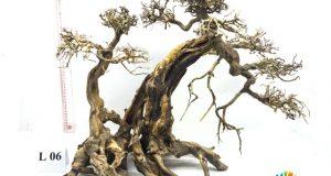 Hình ảnh Mẫu bonsai L06