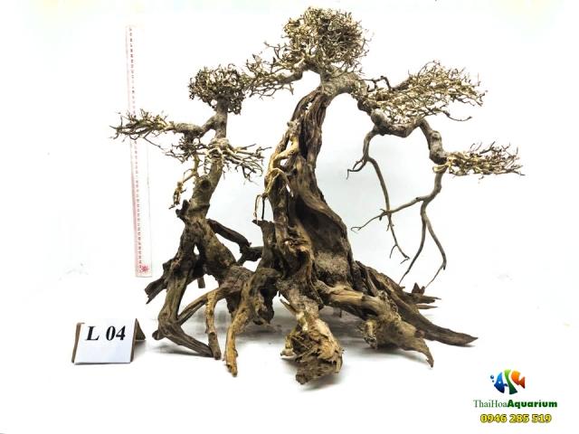 Hình ảnh Mẫu bonsai L04