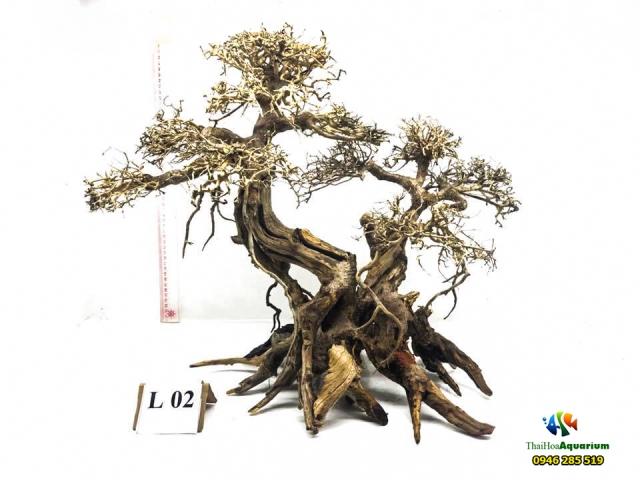 Hình ảnh Mẫu bonsai L02