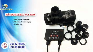 Photo of Bơm điều chỉnh lưu lượng Jebao ACS 3500 – 5000 – 6500 – 8000 – 10000