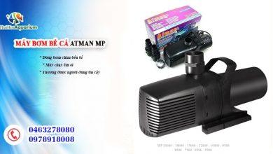Photo of Máy bơm Atman MP 5500- 6500- 7500- 8500- 9500- 10000- 12000- 15000- 18000- 20000