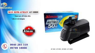 Photo of Máy bơm bể cá Atman AT 3000- 4000- 5000- 6000- 8000- 10000
