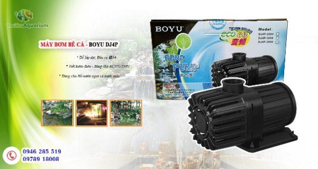Hình ảnh Máy bơm tiết kiệm điện DJ4P