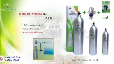 Photo of Bình CO2 Cylinder 1L – 2L – 3L cho bể thủy sinh
