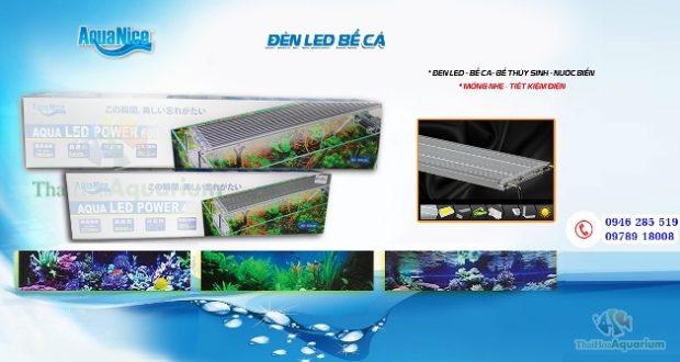 Hình ảnh Đèn Led AquaNice cho bể thủy sinh cá biển