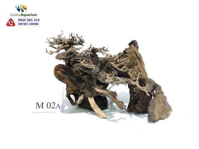 Lũa Thế Bonsai M02A