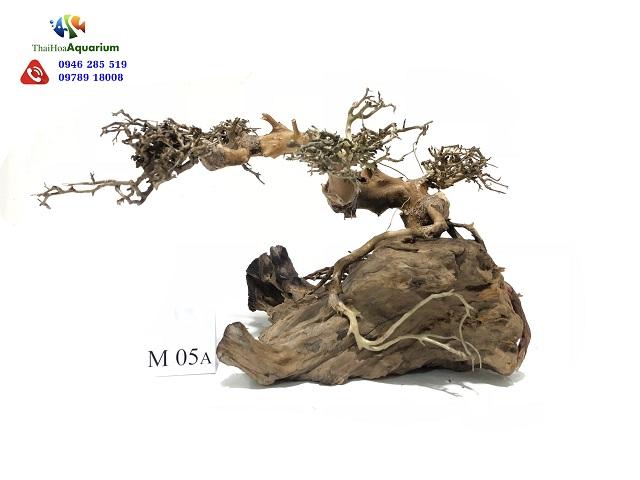 Hình ảnh Lũa Thế Bonsai M05A