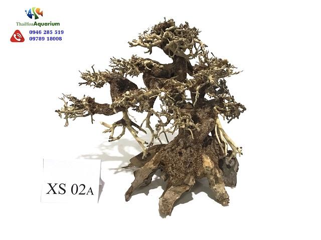 Hình ảnh Lũa bonsai XS02
