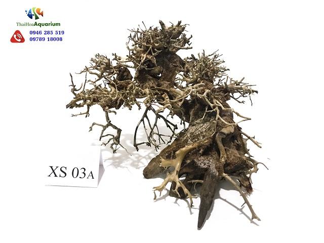 Hình ảnh Lũa bonsai XS03A