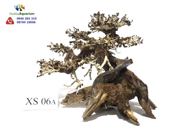 Hình ảnh Lũa bonsai XS06A
