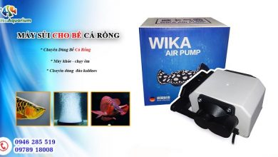 Photo of Máy sục khí Wika Air Pump