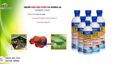 Hình ảnh Stress Coat API khử độc nước - dưỡng cá